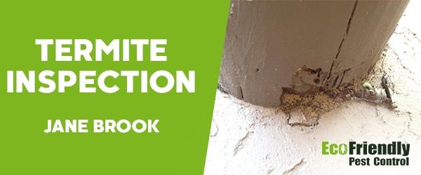 Termite Inspection Jane Brook