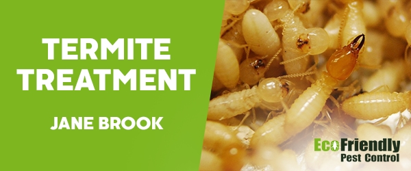 Termite Control Jane Brook