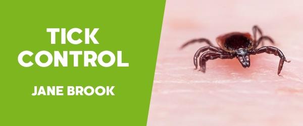 Ticks Control Jane Brook