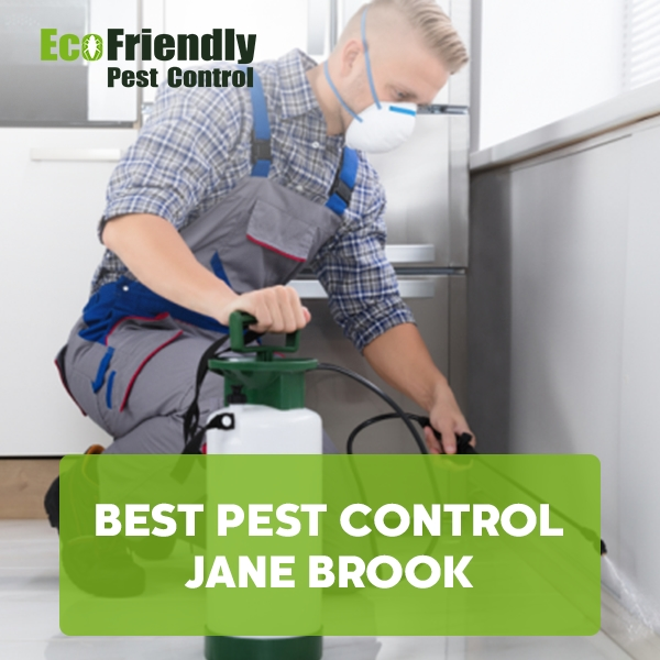 Best Pest Control Jane Brook
