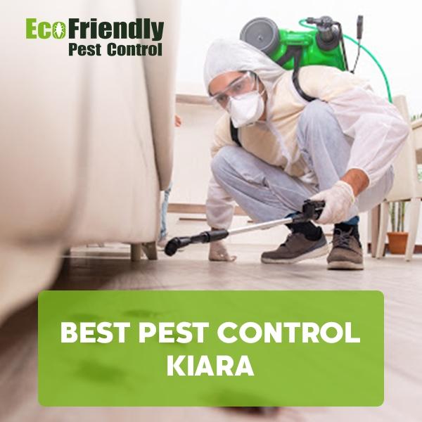 Best Pest Control  Kiara