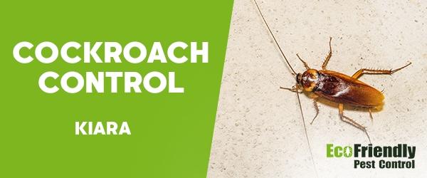 Cockroach Control  Kiara