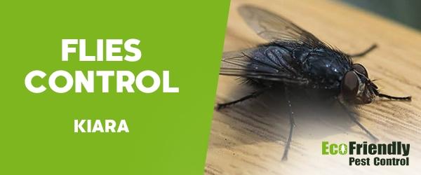 Flies Control  Kiara