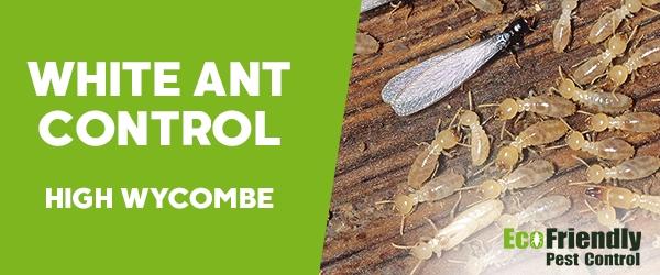 White Ant Control  Kiara