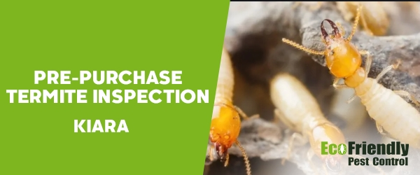 Pre-purchase Termite Inspection  Kiara