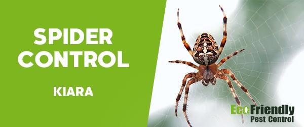 Spider Control  Kiara
