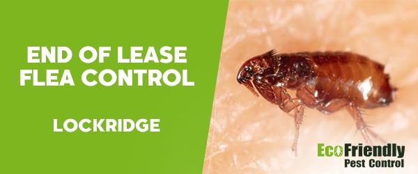 End of Lease Flea Control Lockridge