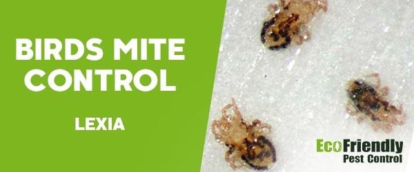 Bird Mite Control Lexia