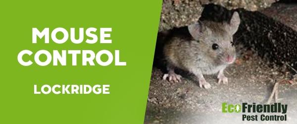 Mouse Control Lockridge