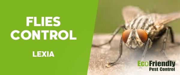 Flies Control Lexia