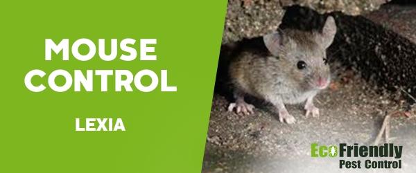 Mouse Control Lexia