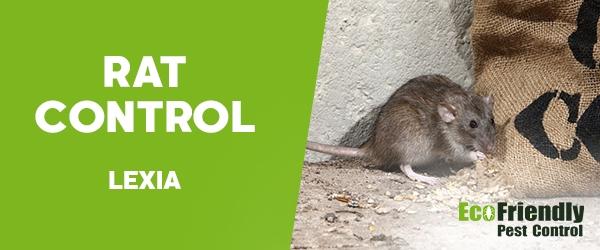 Rat Pest Control Lexia