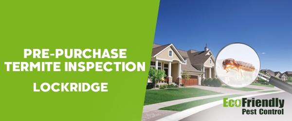 Pre-purchase Termite Inspection Lockridge