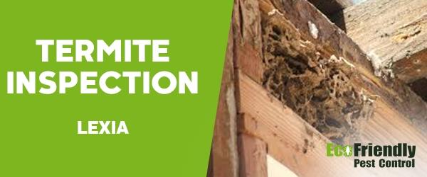 Termite Inspection Lexia