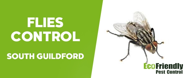 Flies Control South Guildford