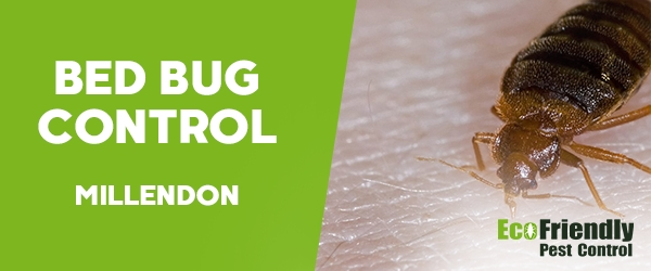 Bed Bug Control Millendon