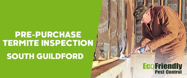 Pre-purchase Termite Inspection South Guildford