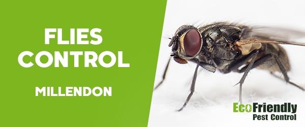 Flies Control Millendon