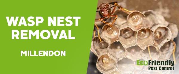 Wasp Nest Remvoal Millendon