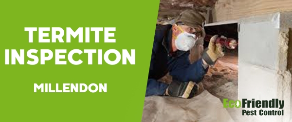 Termite Inspection Millendon