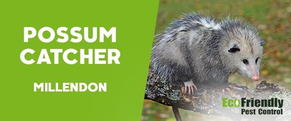 Possum Catcher Millendon