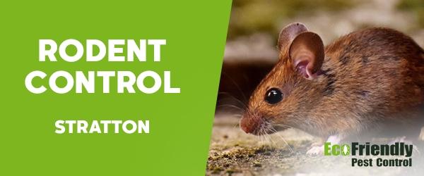 Rodent Treatment  Stratton