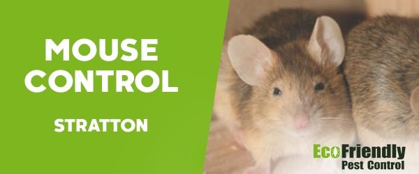 Mouse Control  Stratton