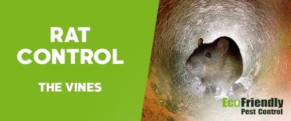 Rat Pest Control The Vines