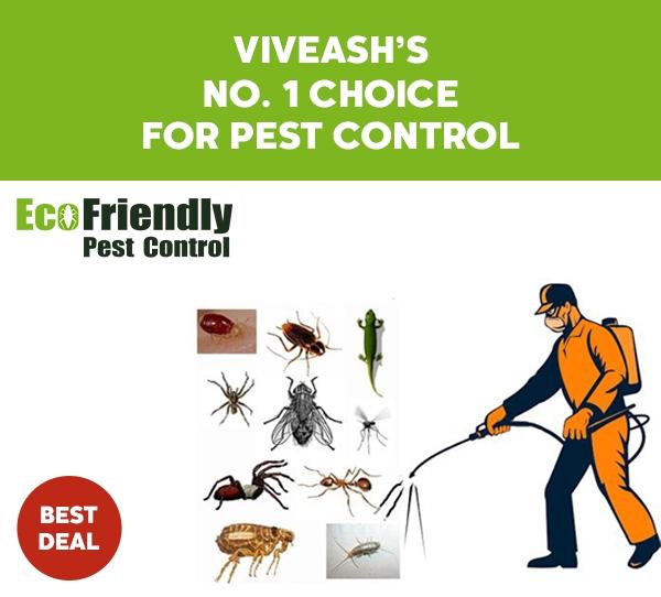 Pest Control Viveash