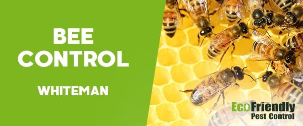 Bee Control  Whiteman