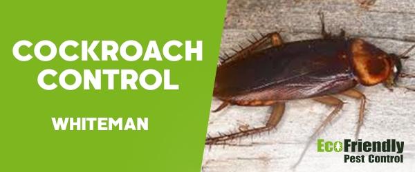 Cockroach Control  Whiteman