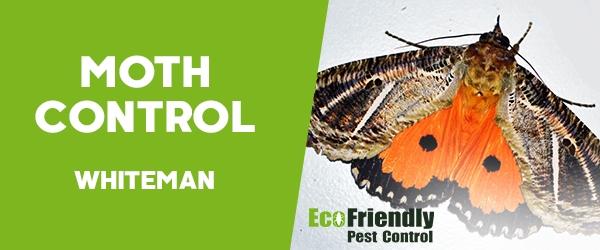 Moth Control  Whiteman