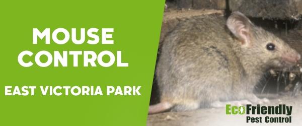 Mouse Control  East Victoria Park