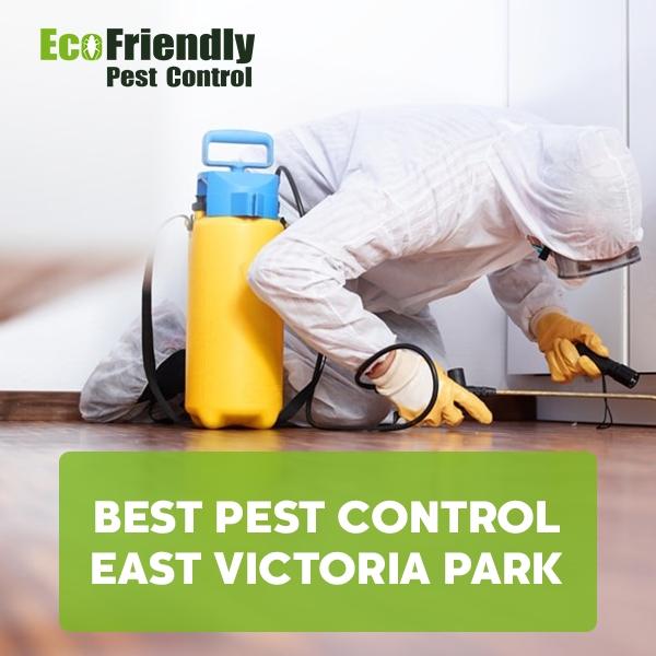 Best Pest Control  East Victoria Park