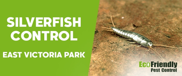 Silverfish Control  East Victoria Park