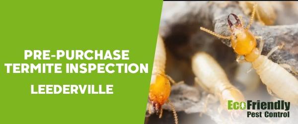 Pre-purchase Termite Inspection  Leederville