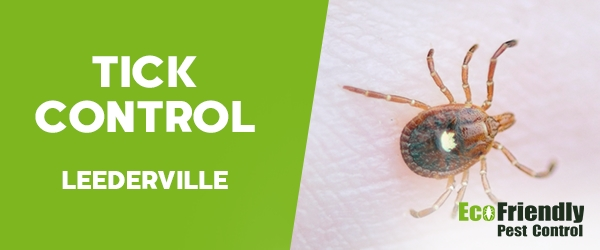 Ticks Control  Leederville