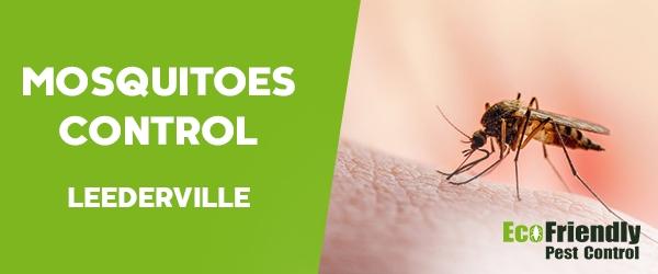 Mosquitoes Control  Leederville
