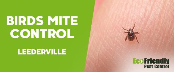Bird Mite Control  Leederville