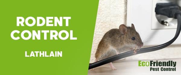 Rodent Treatment Lathlain