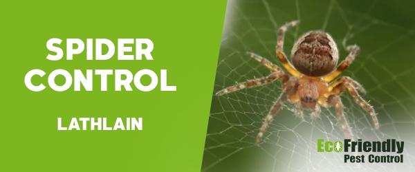 Spider Control Lathlain