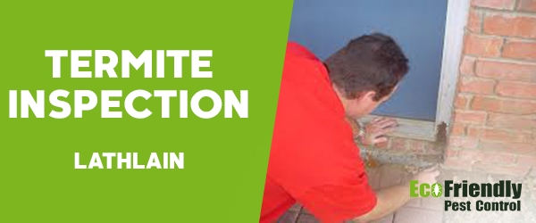 Termite Inspection Lathlain