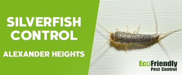 Silverfish Control Alexander Heights