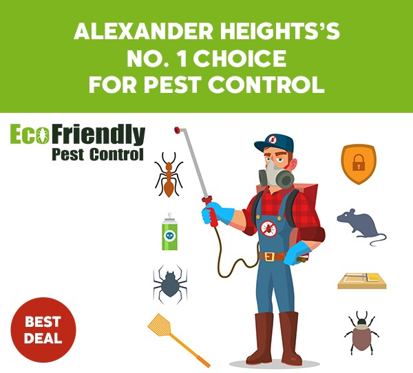 Pest Control Alexander Heights