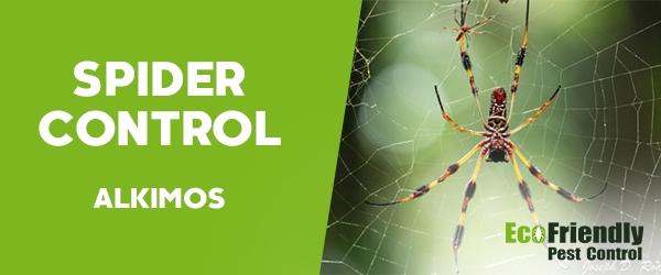 Spider Control  Alkimos