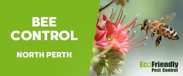 Bee Control North Perth