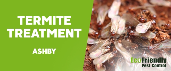 Termite Control Ashby