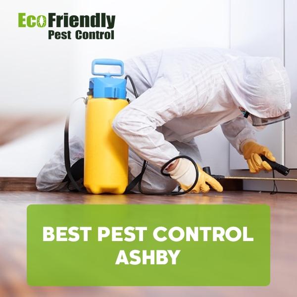 Best Pest Control Ashby