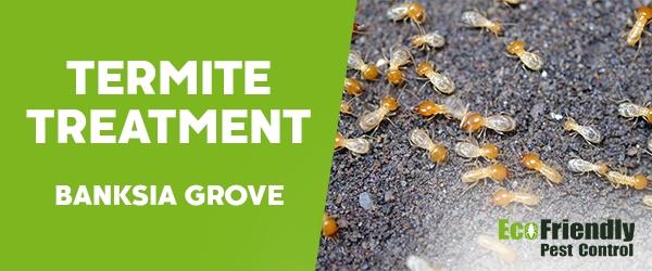 Termite Control  Banksia Grove