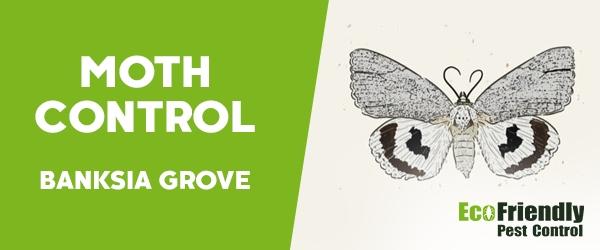 Moth Control  Banksia Grove